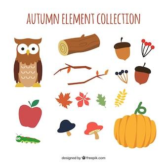 Colección colorida de elementos de otoño