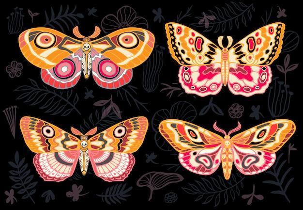 Colección de coloridas mariposas, polillas tropicales nocturnas hawkmoth sobre fondo floral, conjunto de insectos, estilo vintage, alas, flores, hojas. dibujado a mano .