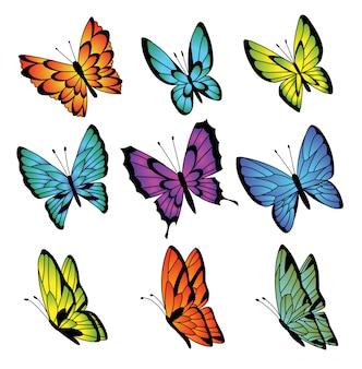Colección de coloridas mariposas