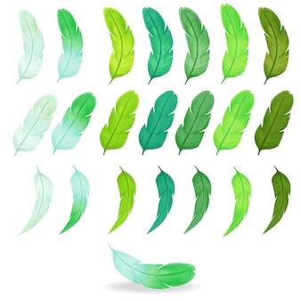 Colección de coloridas plumas acuarelas, paleta verde.