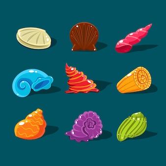 Colección de conchas de colores