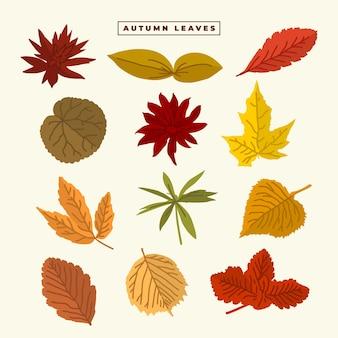 Colección de conjunto de vectores de hojas de otoño