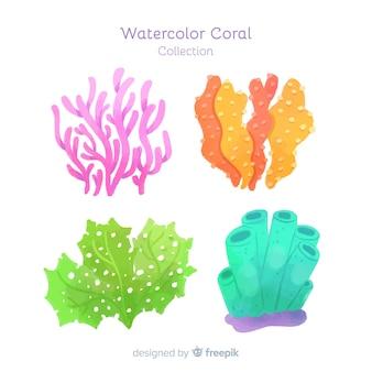 Colección coral acuarela