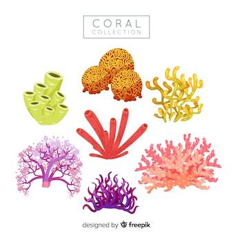 Colección coral dibujado a mano