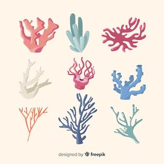 Colección corales dibujados a mano