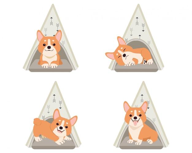 Una colección de corgi lindo en la tienda de campaña o la cama del perro en estilo de vector plano.