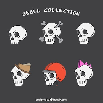 Colección de cráneos con accesorios decorativos