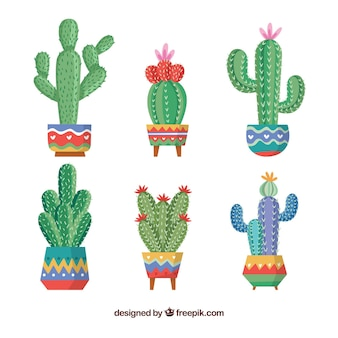 Colección creativa de cactus