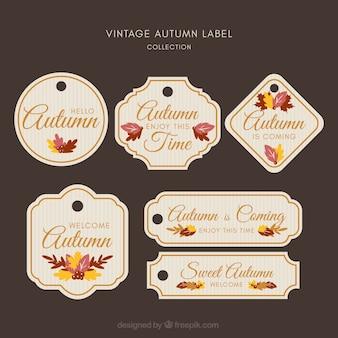 Colección de creativas etiquetas de otoño
