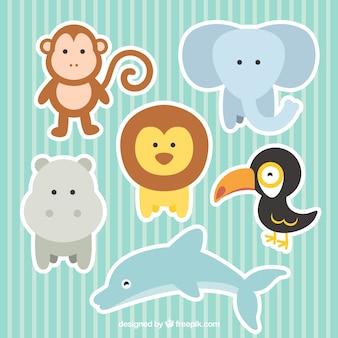 Colección de animales monos de zoo