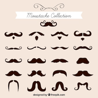 Colección de bigotes elegantes