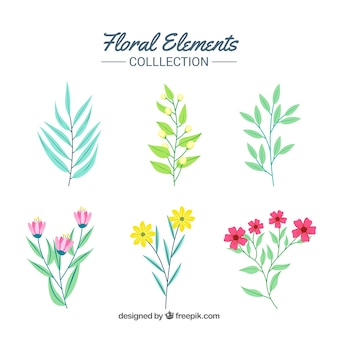 Colección de elementos florales elegantes con diseño plano