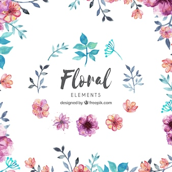Colección de elementos florales en estilo acuarela