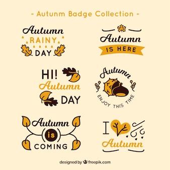 Colección de etiquetas de otoño dibujadas a mano