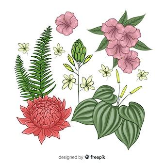 Colección de hojas y flores tropicales