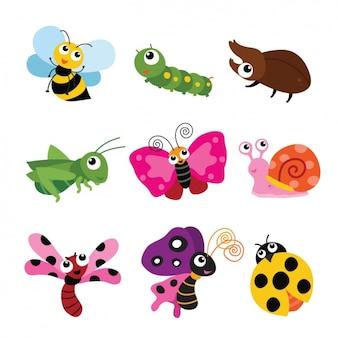 Colección de insectos a color