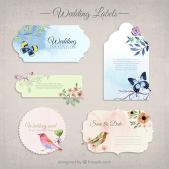 Colección de la boda invitaciones