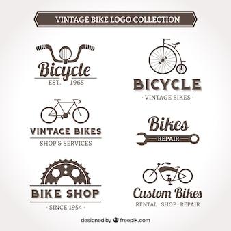 Colección de logo vintage de bicicleta