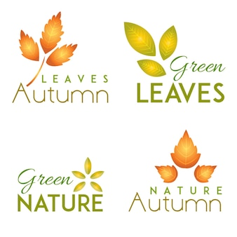 Colección de logotipos de acción de gracias