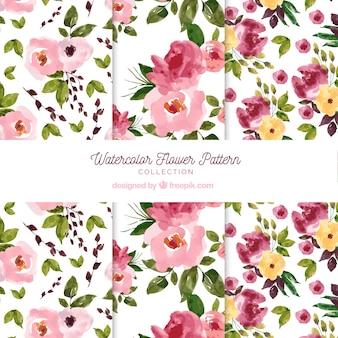 Colección de patrones de flores en estilo acuarela