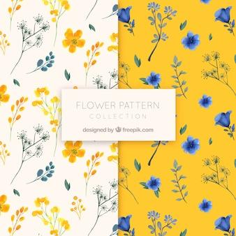 Colección de patrones de flores en estilo de acuarela