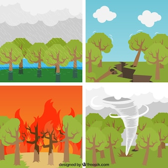 Colección de desastres naturales