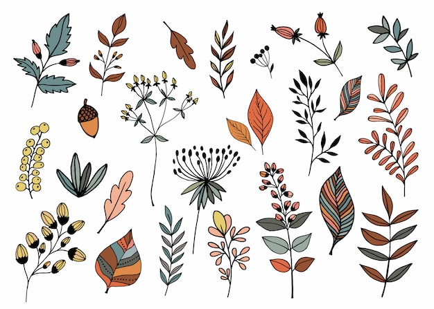 Colección dibujada a mano con diferentes plantas de temporada.