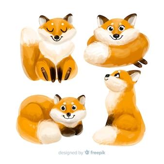 Colección de dibujos de acuarela de zorro