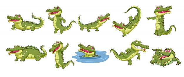 Colección de dibujos animados de cocodrilo