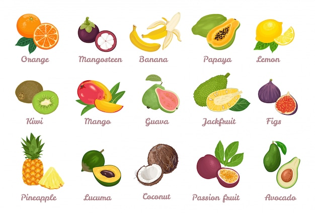 Colección de dibujos animados de frutas tropicales.