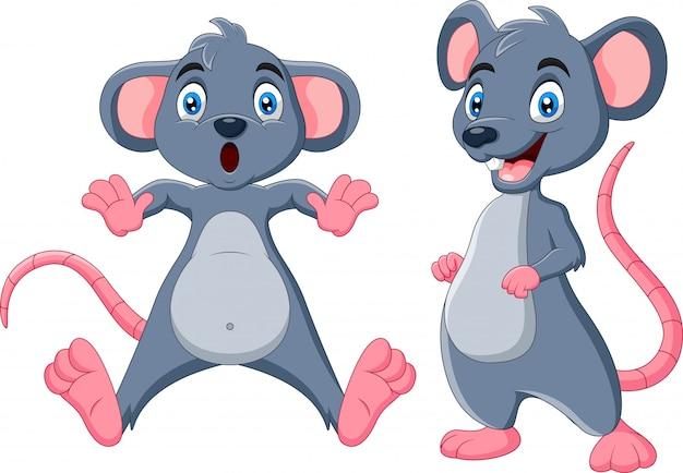 Colección de dibujos animados gracioso ratón de pie