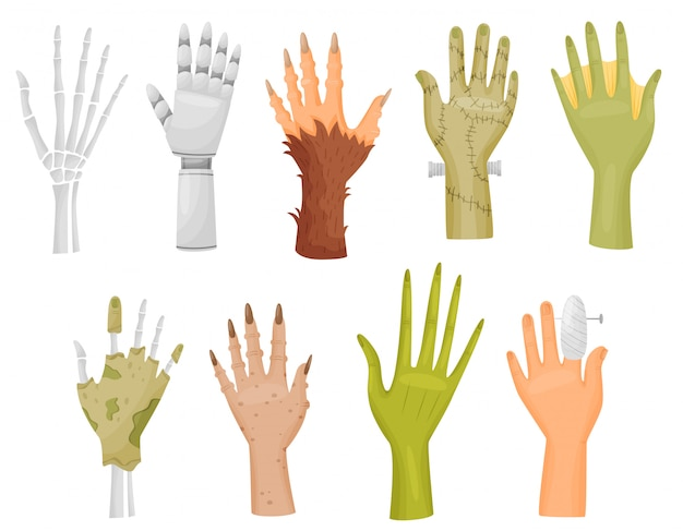 Colección de diferentes manos sobre fondo blanco.