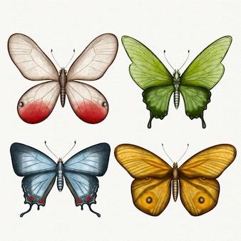 Colección de diferentes mariposas acuarelas.