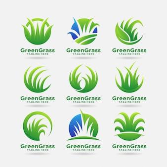 Colección de diseño de logo de hierba verde