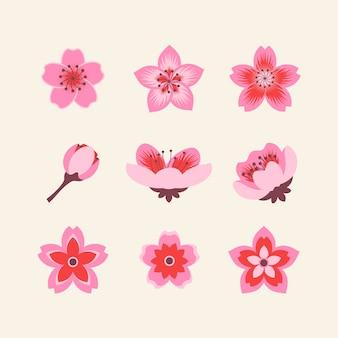 Colección de diseño plano de flores de cerezo