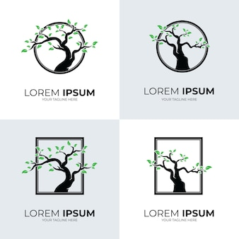 Colección de diseño de plantilla de logotipo de árbol