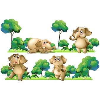Colección de diseños de elefante