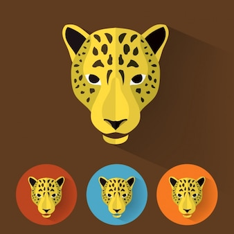 Colección de diseños de guepardo
