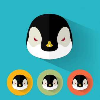 Colección de diseños de pingüino