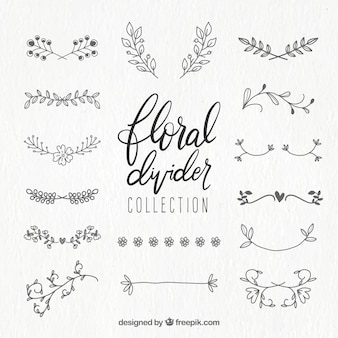 Colección de divisores con ornamentos florales
