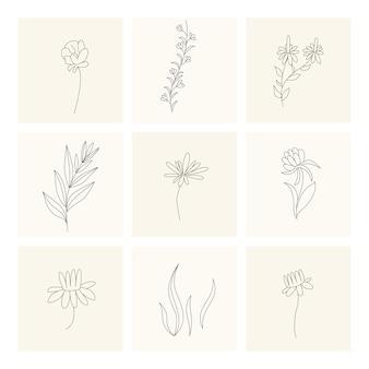 Colección de elementos florales de diseño de plantas dibujadas a mano