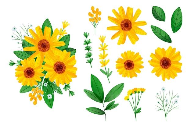 Colección de elementos de flores de acuarela pintados a mano