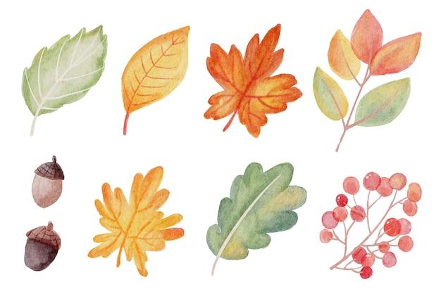 Colección de elementos de hojas de otoño otoño acuarela aislado sobre fondo blanco