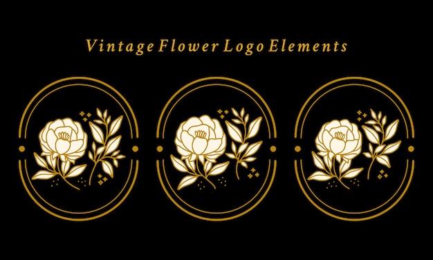 Colección de elementos de logotipo de flor de peonía botánica vintage dibujada a mano