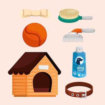 Colección de elementos para perros.