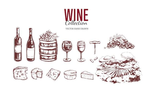 Colección de elementos de vino aislado en blanco