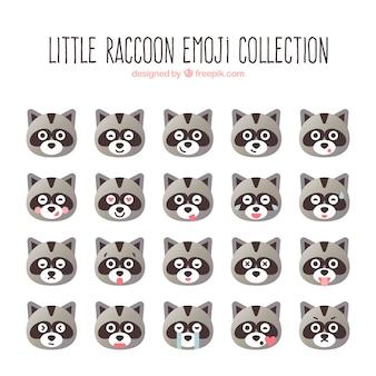 Colección de emoticonos de mapache pequeño