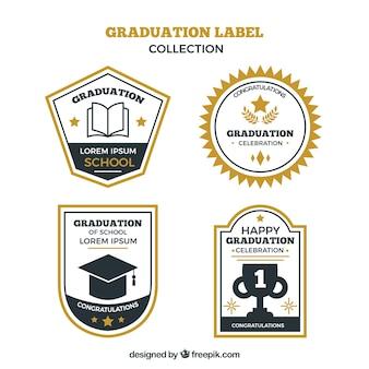 Colección de etiquetas de graduación con diseño plano