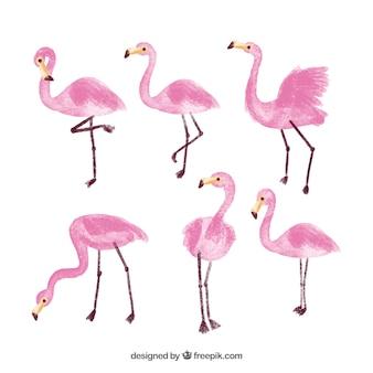 Colección de flamingos en estilo de acuarela