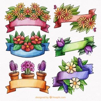 Colección floral de cintas de acuarela de primavera